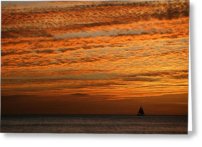 Sailboat At Sunset Greeting Card by Bryan Allen