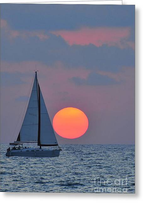 Psi Greeting Cards - Sailboat at sunset  Greeting Card by Shay Levy