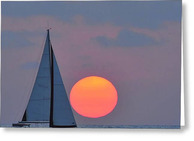 Sailboat at sunset  Greeting Card by Shay Levy