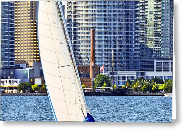 Sailboat in Toronto harbor Greeting Card by Elena Elisseeva