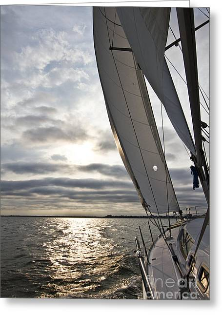 Charters Greeting Cards - Sailboat Sailing Beneteau 49 Charleston Harbor Greeting Card by Dustin K Ryan