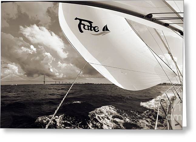 Ravenel Greeting Cards - Sailboat Spinnaker Fate Beneteau 49 Charleston SC  Greeting Card by Dustin K Ryan