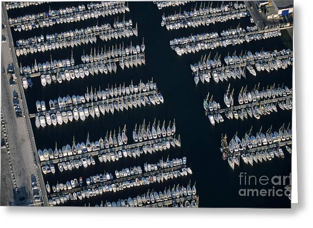 Sailboats In Water Greeting Cards - Sailboats at wharf Greeting Card by Sami Sarkis