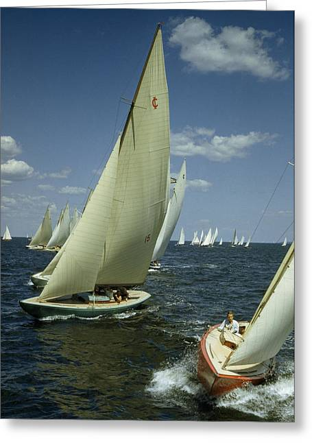 Sailboats In Water Greeting Cards - Sailboats Cross A Starting Line Greeting Card by B. Anthony Stewart