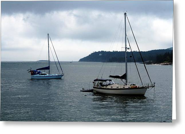 Sailboat Art Greeting Cards - Sailboats in Bar Harbor Greeting Card by Linda Sannuti