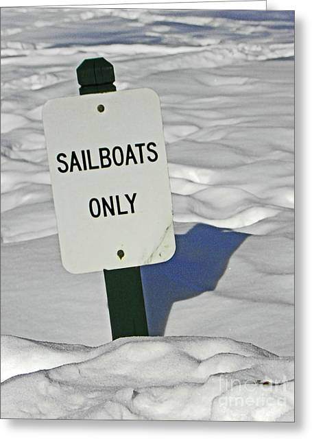 Winter Photos Photographs Greeting Cards - Sailboats Only Greeting Card by Elizabeth Hoskinson