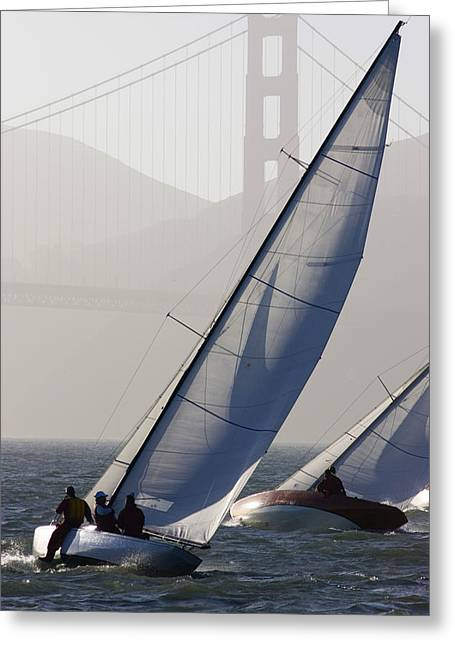 Sailboats In Water Greeting Cards - Sailboats Race On San Francisco Bay Greeting Card by Skip Brown