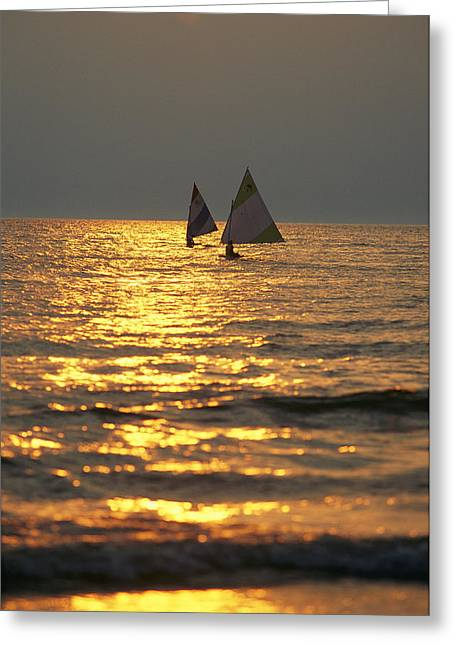 Southwick Greeting Cards - Sailboats Travel Across The Golden Greeting Card by Skip Brown