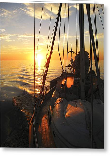 Moist Digital Art Greeting Cards - Sailing Greeting Card by Anne Mott