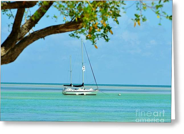 Isla Morada Greeting Cards - Sailing away to Key Largo Greeting Card by Rene Triay Photography