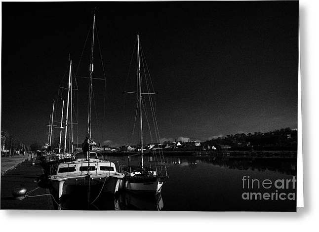 Yacht Basin Greeting Cards - sailing boats moored at the Albert Basin on the newry canal newry county down  Greeting Card by Joe Fox