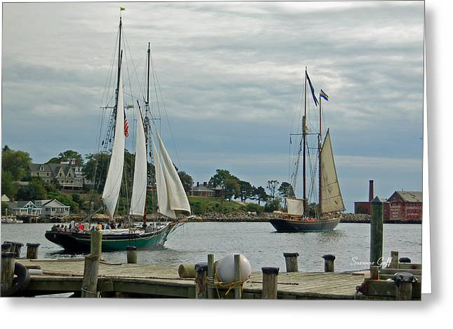 Tall Ships Greeting Cards - Sailing from Gloucester Greeting Card by Suzanne Gaff
