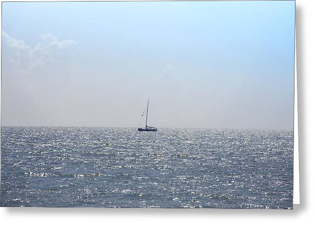 Sailing On Greeting Card by Bill Cannon