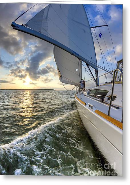 The North Photographs Greeting Cards - Sailing on the North Edisto Inlet During Sunset Beneteau 49 Fate Greeting Card by Dustin K Ryan
