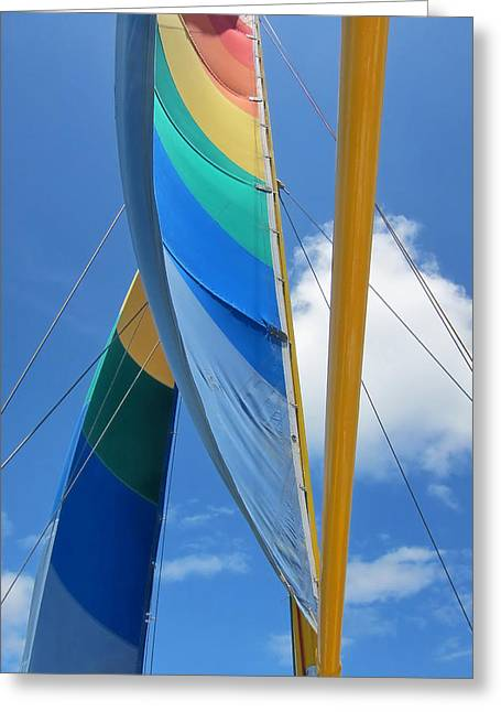 Jim Nelson Greeting Cards - Sails Greeting Card by Jim Nelson