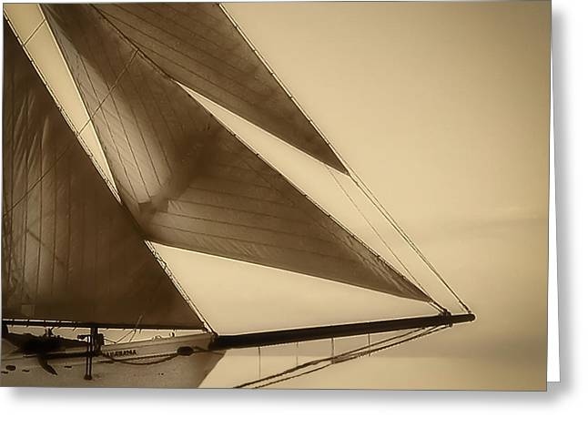 Schooner Greeting Cards - Sails Greeting Card by Michael Petrizzo