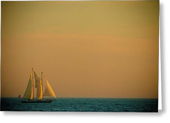 Sailing Boat Greeting Cards - Sails Greeting Card by Sebastian Musial