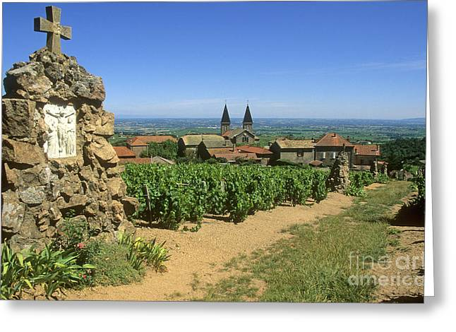 Grape Leaves Greeting Cards - Saint Joseph en Beaujolais. France Greeting Card by Bernard Jaubert
