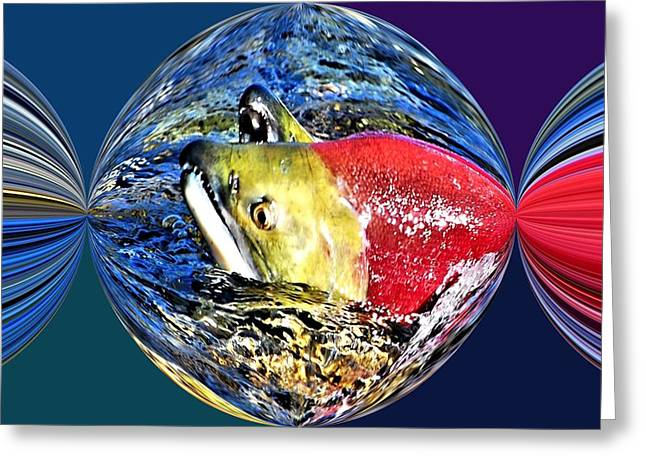 Fish. Spherical Greeting Cards - Salmon Party Popper Greeting Card by Don Mann