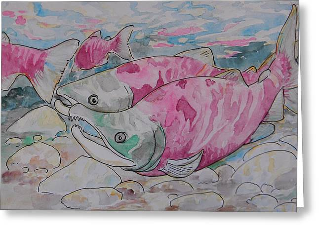 Jenn Cunningham Greeting Cards - Salmon Spawn Greeting Card by Jenn Cunningham
