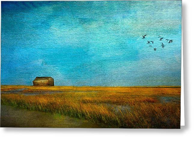 Sea Birds Mixed Media Greeting Cards - Salt Marsh Greeting Card by Michael Petrizzo