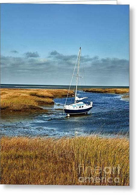 salt Marsh Sailboat Greeting Card by John Greim