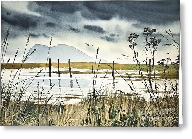 Landscape Framed Prints Greeting Cards - Samish Bay Shore Greeting Card by James Williamson