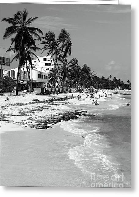 Wrapped Canvas Greeting Cards - San Andres Island Beach View Greeting Card by John Rizzuto