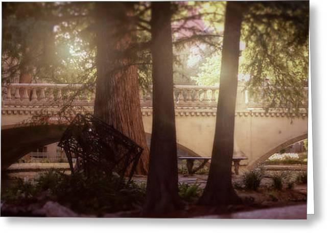 Landscapes Greeting Cards - San Antonio River Walk Greeting Card by Kelly Rader