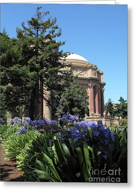 Bay Area Flowers Greeting Cards - San Francisco Palace of Fine Arts - 5D18050 Greeting Card by Wingsdomain Art and Photography
