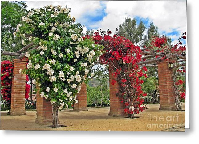 Htc Greeting Cards - San Juan Capistrano Historic Town Center Park Greeting Card by Traci Lehman