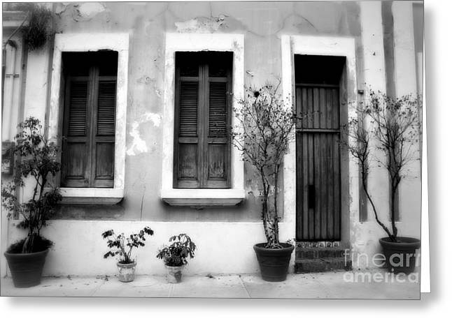 San Juan Living 2 Greeting Card by Perry Webster