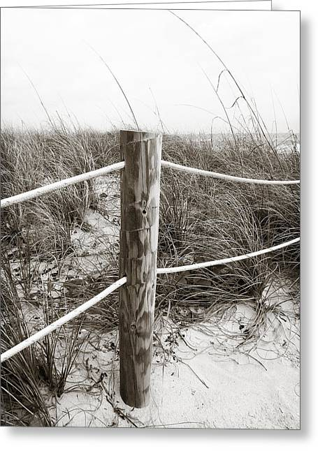 Sea Oats Greeting Cards - Sand and Grass Greeting Card by Julie Palencia