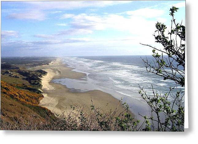 Sand And Sea Greeting Cards - Sand And Sea 7 Greeting Card by Will Borden