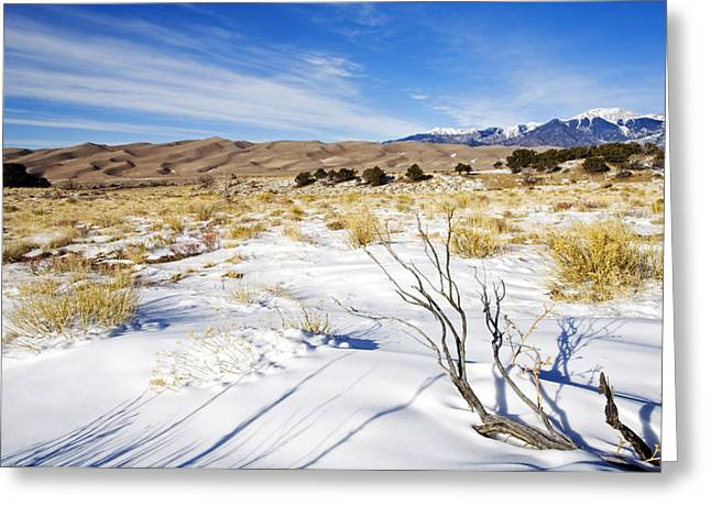 Colorado Sand Dunes Greeting Cards - Sand and Snow Greeting Card by Mike  Dawson