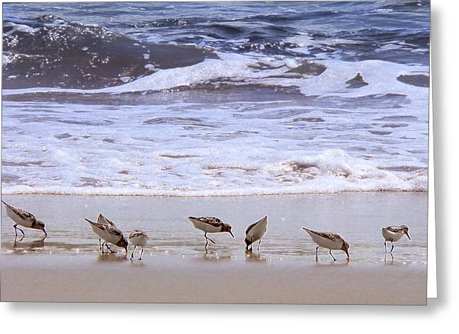 Ruddy Greeting Cards - Sand Dancers Greeting Card by Steven Sparks
