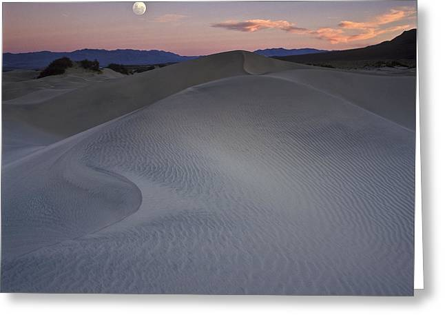 Moonrise Greeting Cards - Sand Dune and Moon Death Valley Greeting Card by Joe  Palermo