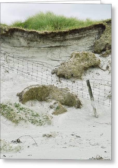 Sand Fences Greeting Cards - Sand Dune Erosion Greeting Card by Adrian Bicker