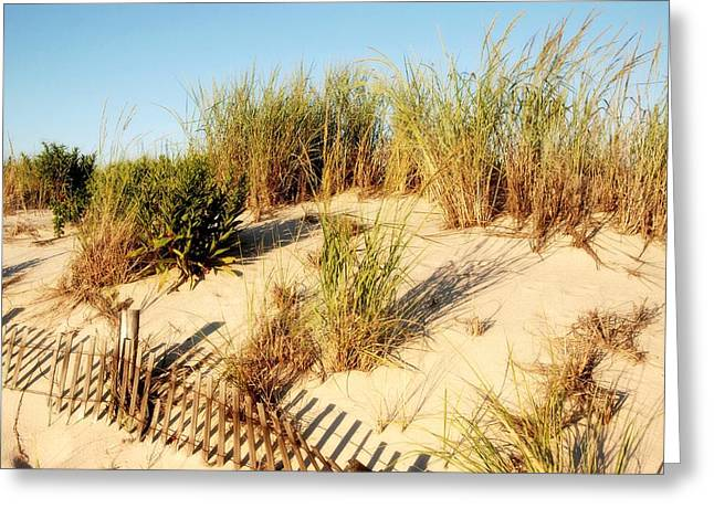 Sand Fences Greeting Cards - Sand Dune III - Jersey Shore Greeting Card by Angie Tirado