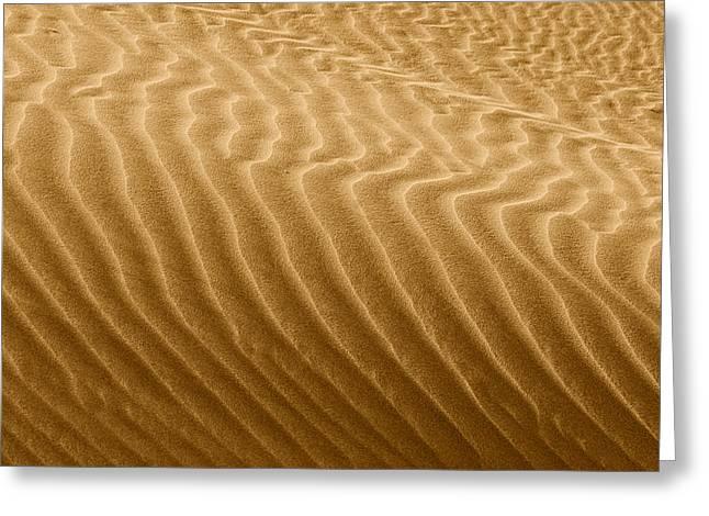 Sand Dune Greeting Cards - Sand Dune Mojave Desert California Greeting Card by Christine Till