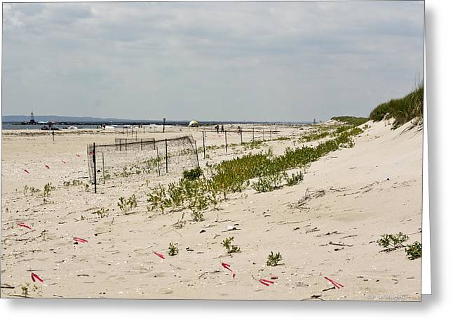 """""""sand Dunes Greetings Card"""" Greeting Cards - Sand Dunes Greeting Card by Ann  Murphy"""