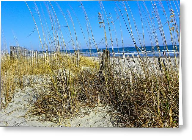 Sand Dunes Greeting Card by Eve Spring