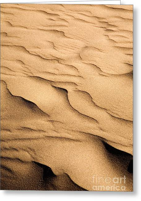 Sand Patterns Greeting Cards - Sand dunes Greeting Card by Kati Molin