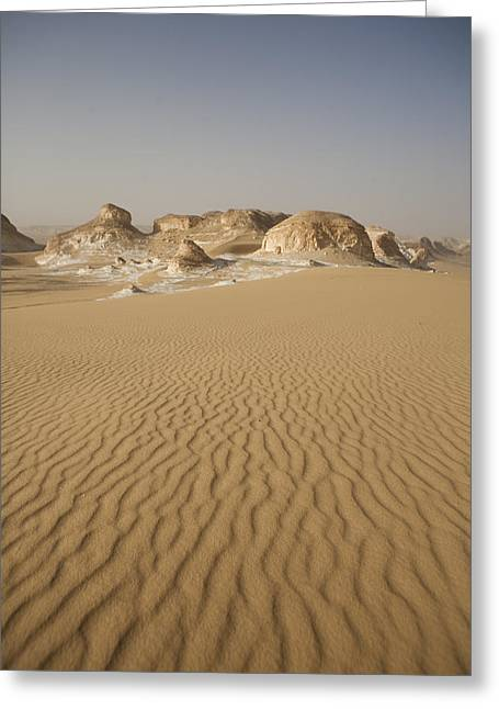 Middle Of Nowhere Greeting Cards - Sand Dunes Ripple In The Wind Greeting Card by Taylor S. Kennedy