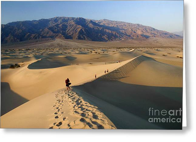 Sand Dunes Greeting Card by Tomaz Kunst