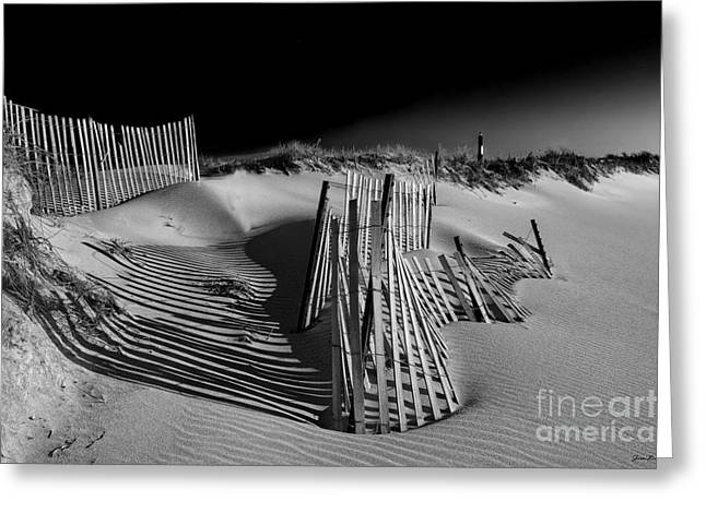Beach Photographs Greeting Cards - Sand Fence Greeting Card by Jim Dohms