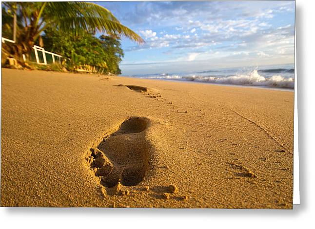 Best Sellers -  - Rincon Beach Greeting Cards - Sand Prints Greeting Card by Tim  Fitzwater