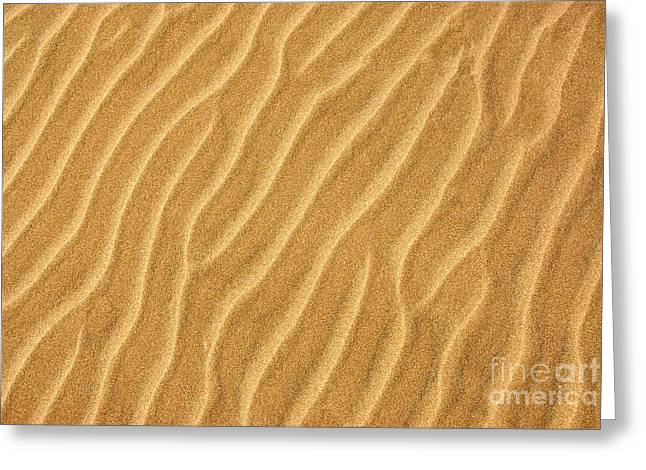 Rift Greeting Cards - Sand ripples abstract Greeting Card by Elena Elisseeva
