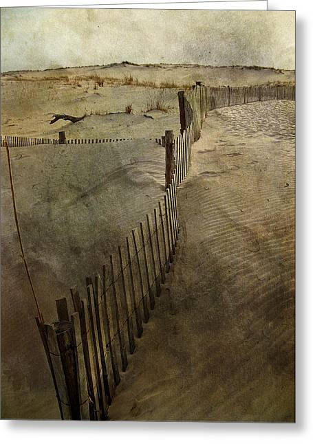Sand Fences Photographs Greeting Cards - Sand Greeting Card by Trish Tritz