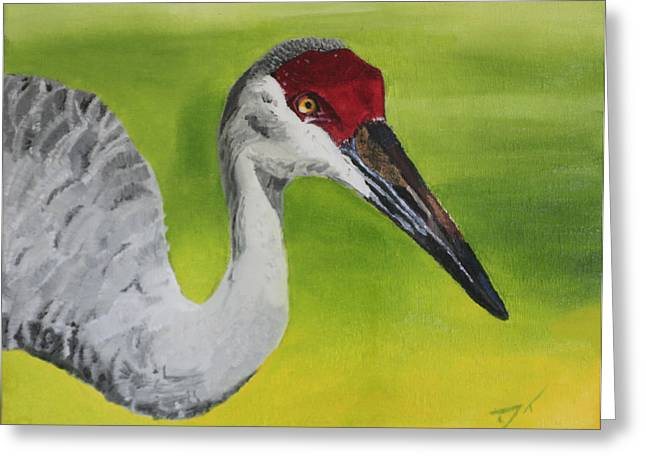 Sandhill Crane Greeting Card by D Turner